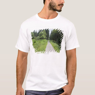 Germany, Thuringia, path in forest T-Shirt