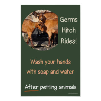 Germs hitch rides. Safety hand-washing poster