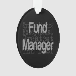 Gestor de fondos de inversión Extraordinaire