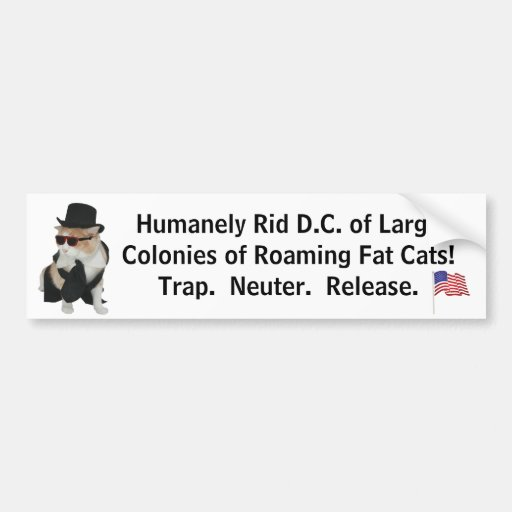 Get Fat Cats off the Street Bumper Stickers