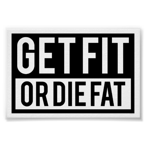 fat or fit? essay