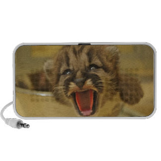 Get Me Out Of Here! Cougar Cub Laptop Speakers