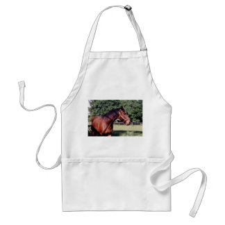 Get My Good Side Standard Apron
