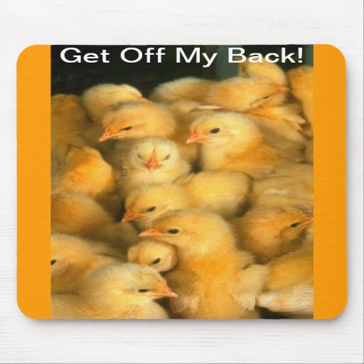 Get Off My Back Baby Chick Chicks Chicken Mouse Pad