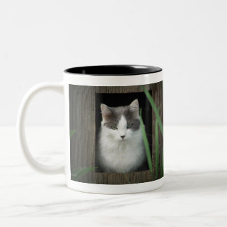 Get off my lawn Two-Tone coffee mug