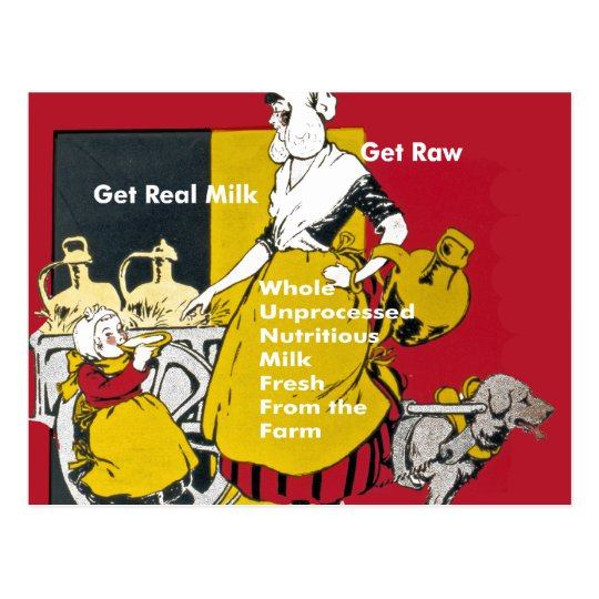 Get Real Milk- Get Raw Vintage Poster Postcard