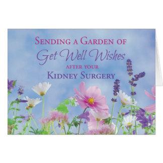 Get Well After Kidney Surgery, Garden Flowers Card