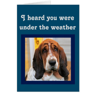 """""""Get Well"""" Card w/Cute Basset """"Under The Weather"""""""