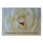 Get Well Card, White Rose