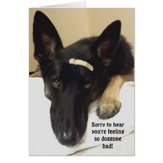 Get Well - Feeling So Doggone Bad Card German SHepherd