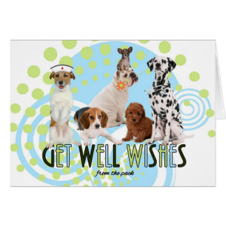 Get Well From the Pack Dogs Card