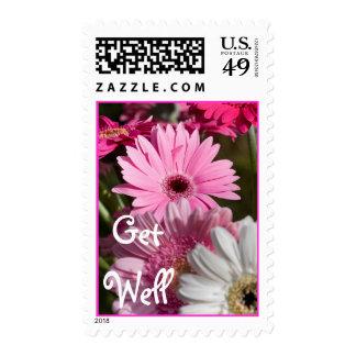 Get Well Gerberas Postage