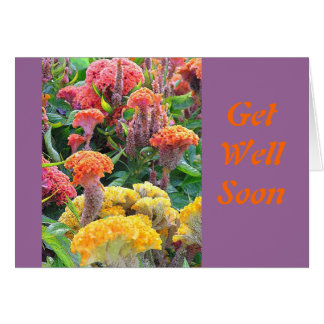"""""""GET WELL"""" NOTECARD/CELOSIA/ SALMON, YELLOW AND OR CARD"""