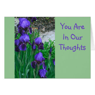 """GET WELL/PURPLE IRISES, """"YOU ARE IN OUR THOUGHTS"""" CARD"""