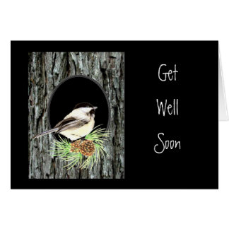 Get Well, Scripture, Peter 5:7,Chickadee, Nature Greeting Card