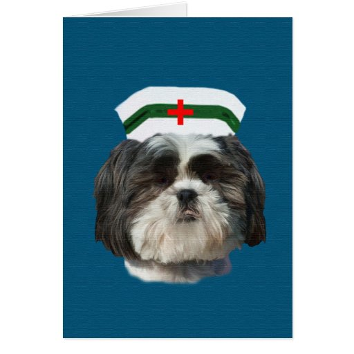 Get Well, Shih Tzu Dog Greeting Cards