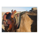 Get Well Slipped Saddle Card - Western