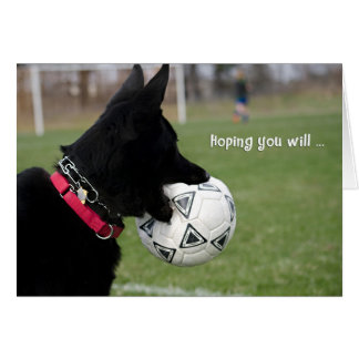 Get Well Soccer Dog Greeting Card