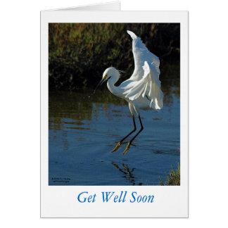 Get Well Soon  08-10-22-Bolsa Chica- 041B Card