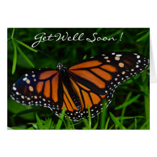 Get Well Soon! Butterfly Card