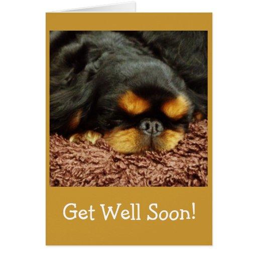 Get Well Soon - Dog Card