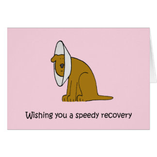 Get well soon for dog. card