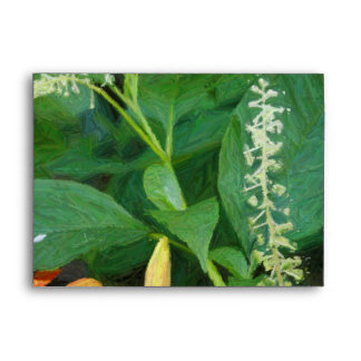 Get Well Soon -  Greeting Card by Yotigo  - Floral Envelope