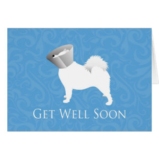 Get Well Soon - Samoyed Male Card