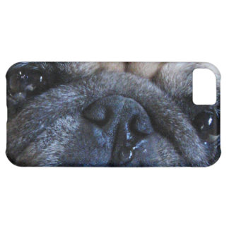 Get Well Soon Sick Pug Dog iPhone 5C Case