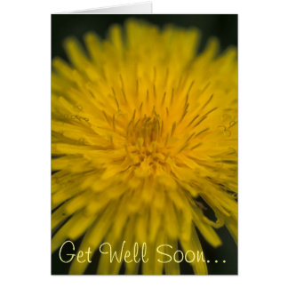 Get Well Soon - Taraxacum officinale (Dandelion) Stationery Note Card