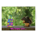 Get Well Squirrel Greeting Cards