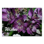 GET WELL WISHES GREETING CARDS