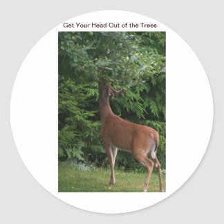 Get Your Head Out of the Trees Classic Round Sticker
