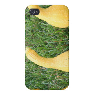 Get Your Squash in Order iPhone 4/4S Cases