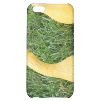Get Your Squash in Order iPhone 5C Cases