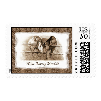 Getting Hitched: Horses, Western: Sepia Drawing Postage