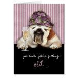getting older, happy birthday, funny dog, pink hat greeting card