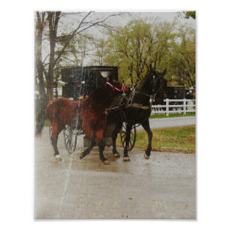 the amish ways Amish facts — answers to y our frequently asked questions about the many facets of amish life amish recipes — several recipes shared by wanda from some of her cookbooks and devotional simple living tips — a guide to help you find ways to simplify your life.