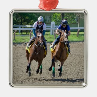 Getting Up in Saratoga Metal Ornament