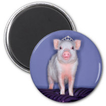 Getty Images | Prize Piglet Magnet