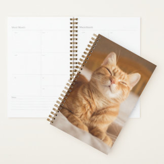 Getty Images | Sleepy Cat Planner
