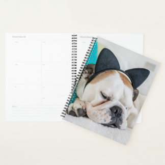 Getty Images | Sleepy Dog with Cat Headband Planner