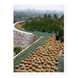 getty museum cacti post card