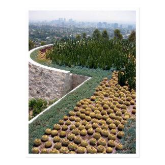 getty museum cacti postcard