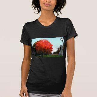 Gettysburg Cemetary T-Shirt