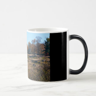 Gettysburg National Park - Big Round Top Magic Mug
