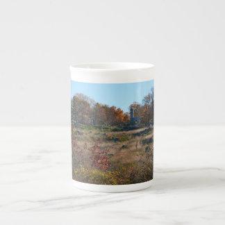 Gettysburg National Park - Big Round Top Tea Cup