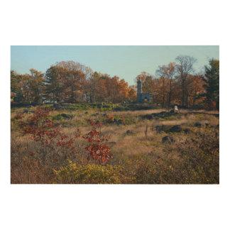 Gettysburg National Park - Big Round Top Wood Print