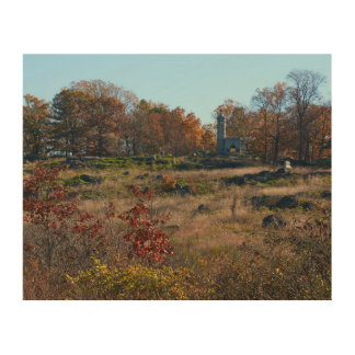 Gettysburg National Park - Big Round Top Wood Wall Art