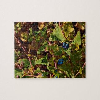 Gettysburg National Park Blue Berries Puzzle